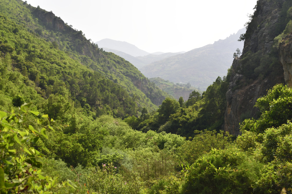 Akshour hike in the Rif Mountains, Morocco