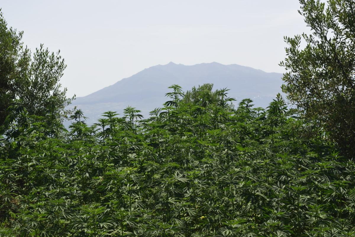 Rif mountains chefchaouen