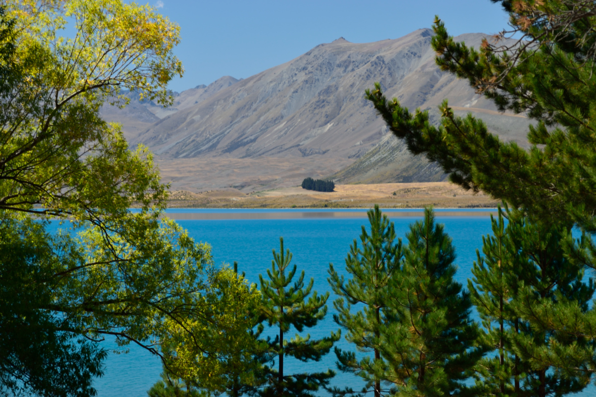 Lake Tekapo from near the Lakefront Lodge Backpackers hostel